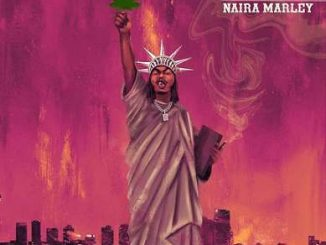 Download Naira Marley - First Time In America